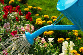 National Water a Flower Day